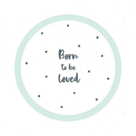 Born To Be Loved, Baby Shower Paper Plates